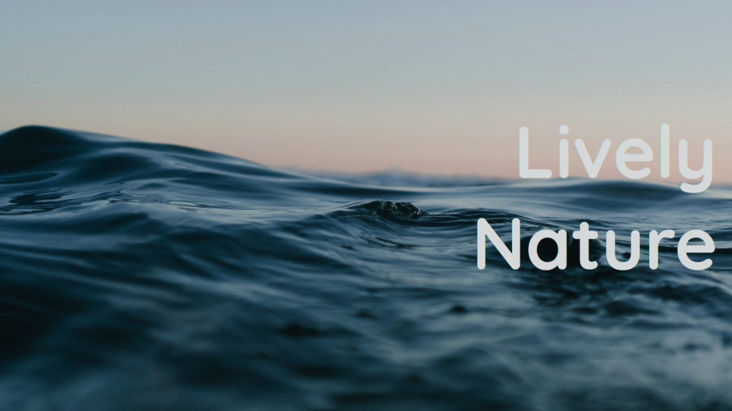Ocean and Gaia healing frequencies