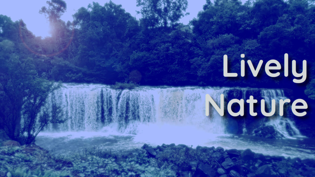 Clean your mind from bad habits and thoughts with relaxing waterfall sounds and natural cascade music