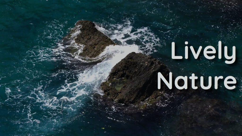 Super relaxing music and sounds for your well-being. The seawater that touches the rocks