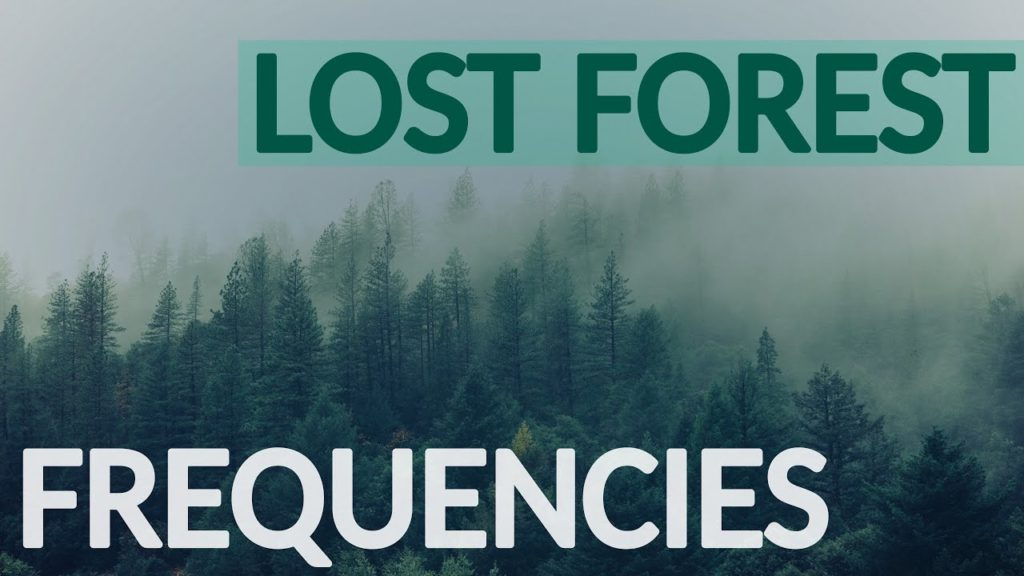 Peaceful forest lost frequencies and sweet natural melodies. Relaxing Music with Beautiful Nature