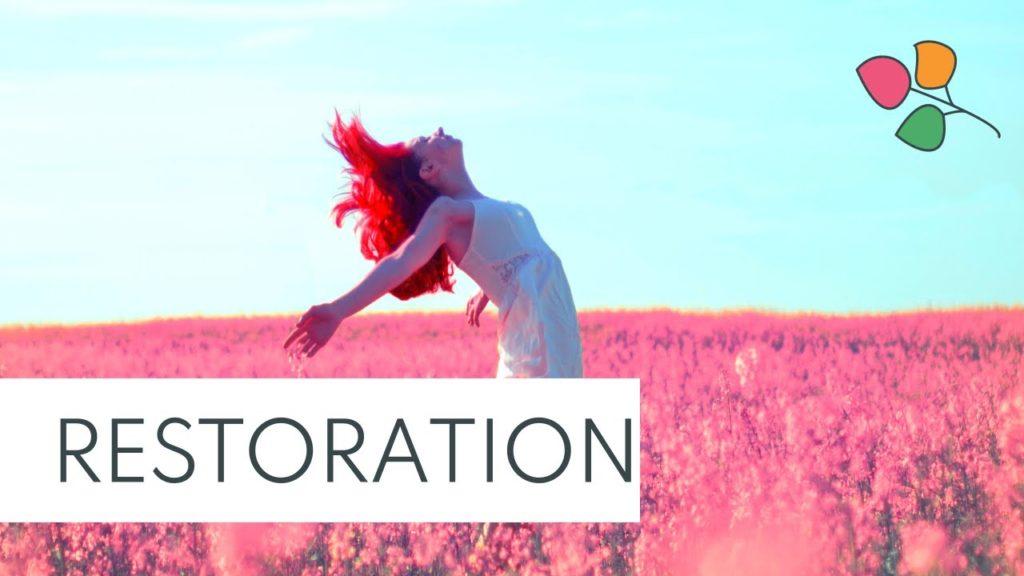 A wise journey for Mind Restoration and Relaxation | Human Mind Set – Löffler Matrix Electronica